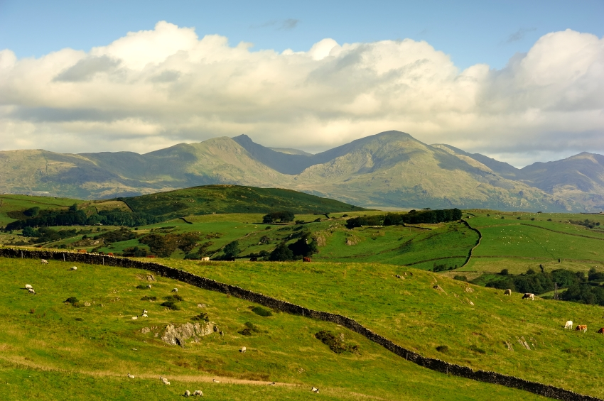 The Old Man of Coniston from Hoad Hill